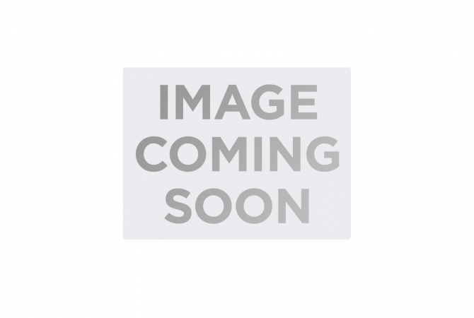 Rebirth Star Pin